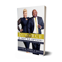 Pre-Order: Divorce is Not an Option